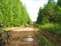 Дорога на Старый Бисер